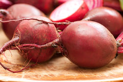 Chioggia or candy cane beets. Red striped chioggia or sweet candy cane beets farm fresh Stock Image