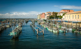 Chioggia Royalty Free Stock Photo