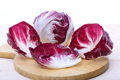 Chioggia Salad. Red and white salade shell Stock Photos