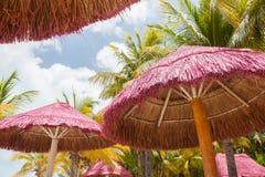 Chioschi della spiaggia immagine stock libera da diritti