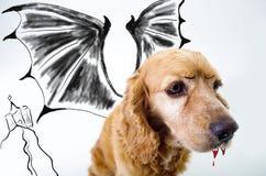 Chiot anglais mignon de vampire de cocker dans l'avant Images stock