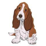 Chiot de chien de basset réaliste Photos libres de droits