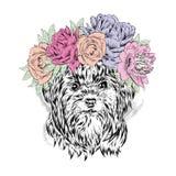Chiot drôle dans une guirlande de fleur Illustration de vecteur Yorkshire Terrier Photographie stock