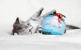 Chiot du chat sibérien avec la boule de Noël Images libres de droits