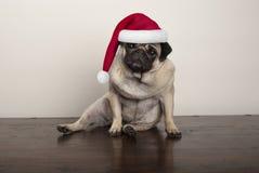 Chiot mignon de roquet de Noël utilisant le chapeau du père noël, s'asseyant sur le plancher en bois rustique Image libre de droits