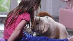 Chiot mignon reniflant peu d'enfant s'asseyant sur le plancher banque de vidéos