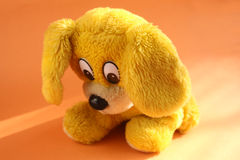 Chiot triste jaune Photo libre de droits
