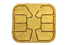 Chip Card royaltyfria foton