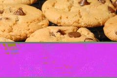 chip chocolate cookies Στοκ Εικόνες