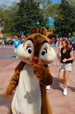 Chip and Dale Royalty Free Stock Images