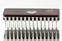 Chip di azienda di trasformazione Fotografie Stock