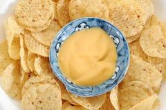 Chip di cereale Fotografie Stock Libere da Diritti