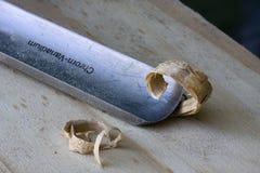 Chip di funzionamento del carpentiere Immagini Stock
