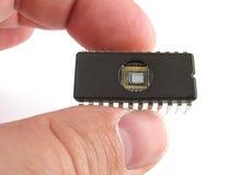 Chip a disposizione Fotografia Stock