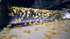 Chip fritti trasportati sul trasportatore moderno in una pianta alimentare, movimento lento archivi video