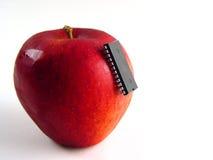 Chip-greifen Sie auf rotem Apfel an! Stockfotografie