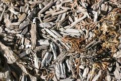 Chip Texture Mixed en bois rugueux avec Foilage mort Photos stock