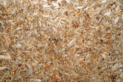 Chipboard texture closeup as background Royalty Free Stock Photo
