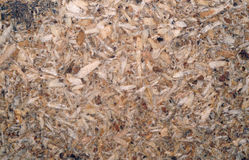 Chipboard texture closeup as background Royalty Free Stock Photography