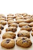 chipchokladkaka Royaltyfria Bilder
