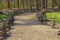 chipen fäktar trä för den delade trailen för stången Fotografering för Bildbyråer