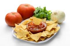 Chiper och salsa Royaltyfria Bilder