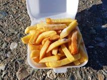 Chiper på en Bristish sommardag royaltyfria foton