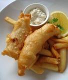 chipfisk royaltyfri foto
