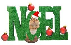 Chipmunk de Noël images libres de droits