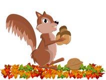 Chipmunk lindo divertido con el cacahuete Fotografía de archivo libre de regalías