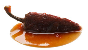 Chipotle en Adobo sauce smoked Jalapeno, paths Royalty Free Stock Photography