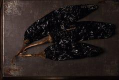Chipotle - jalapeno gerookte Spaanse peper Royalty-vrije Stock Foto