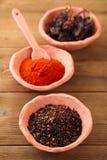 Chipotle - jalapeno smoked chillies Stock Photography