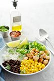 Chipotle spicy chicken with rice corn, beans stock photography