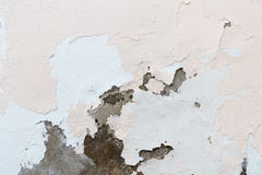 Chipped paint on an old plaster wall Royalty Free Stock Image