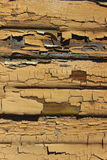 Chipped Paint on a Wall. Tan weathered chipped and cracked paint coming off of a wall stock image