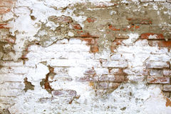 Chipped, peeling white paint on the old red brick wall. Royalty Free Stock Image