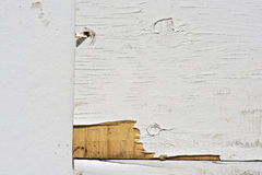 Chipped wall painted wood Stock Images