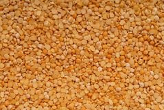 Chipped  yellow pea Stock Image