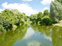 Nature of the river. Chippenham Wiltshire England united kingdom stock photography