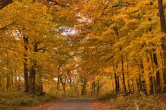 Chippewa Trail. Fall on the Chippewa Trail, Rustic Road  93 outside Luck Wisconsin Stock Photo