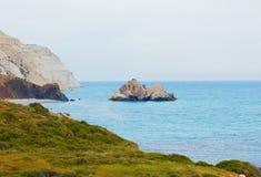 Chipre en el resorte Fotografía de archivo