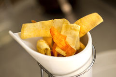chips Immagine Stock