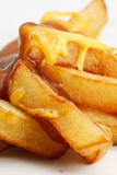 Chips, cheese and gravy. A modern european take away dish Royalty Free Stock Photography