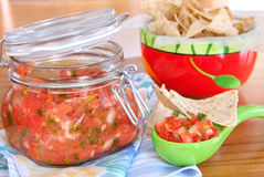 Chips and salsa Stock Photography