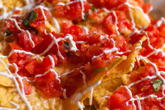 Chips and salsa close up Stock Photos