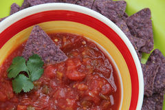 Chips and Salsa. Delicious array of tortilla chips, salsa, and guacamole royalty free stock photos