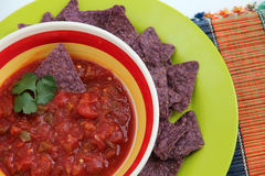Chips and Salsa Royalty Free Stock Photos