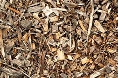 chips trä Royaltyfri Fotografi