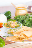 Chips und Tomate Torrtilla Lizenzfreies Stockfoto